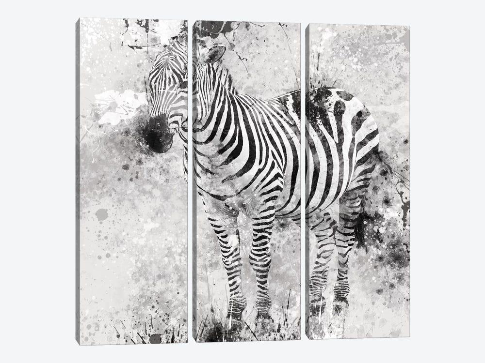 Zebra I by Carol Robinson 3-piece Canvas Art Print