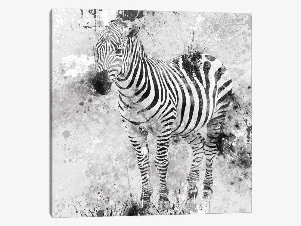 Zebra I 1-piece Canvas Print