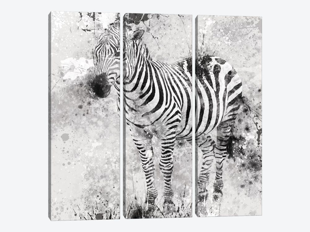 Zebra I by Carol Robinson 3-piece Canvas Art Print