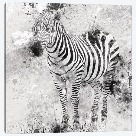 Zebra I Canvas Print #CRO53} by Carol Robinson Art Print