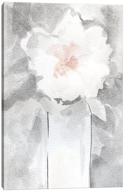 Silver Blush II Canvas Art Print