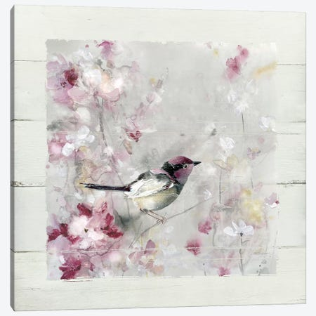 Sitting Pretty Shiplap I Canvas Print #CRO545} by Carol Robinson Canvas Art Print