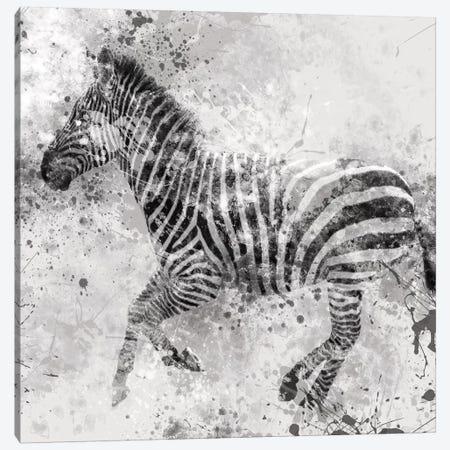 Zebra II Canvas Print #CRO54} by Carol Robinson Canvas Artwork