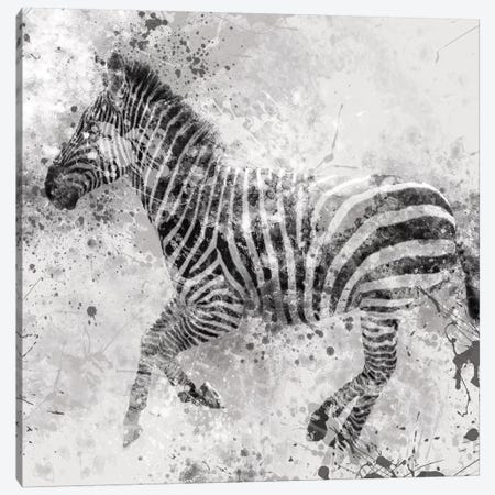 Zebra II Canvas Print #CRO54} by Carol Robinson Canvas Artwork