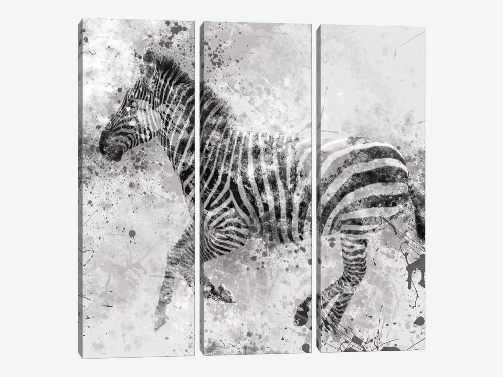 Zebra II by Carol Robinson 3-piece Canvas Wall Art
