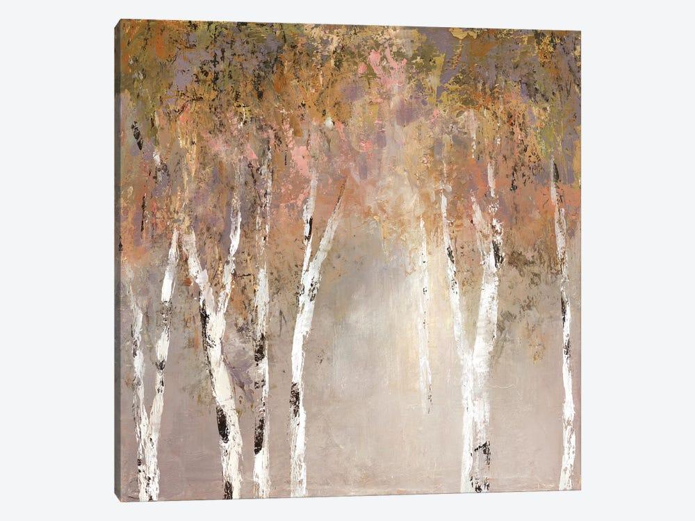 Sunlit Birch II by Carol Robinson 1-piece Art Print
