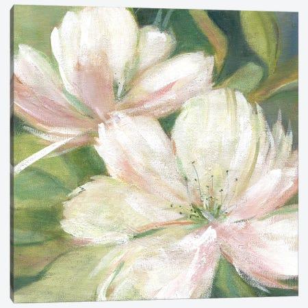 Tropic Promise I Canvas Print #CRO556} by Carol Robinson Canvas Artwork