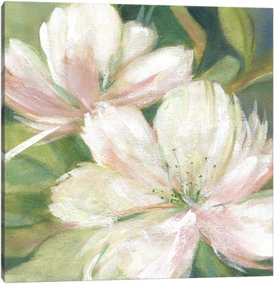 Tropic Promise I Canvas Art Print