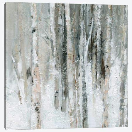 Birch Blush I Canvas Print #CRO568} by Carol Robinson Canvas Artwork