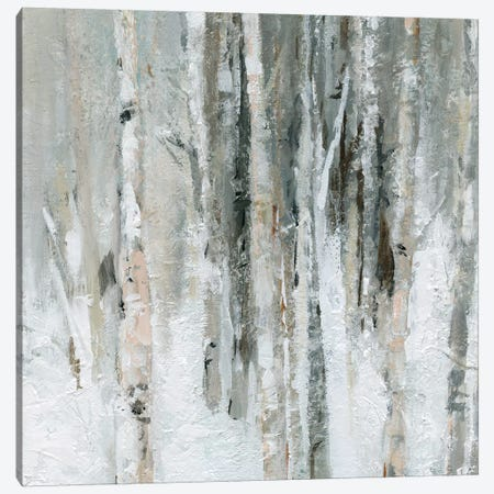 Birch Blush I Canvas Print #CRO568} by Carol Robinson Canvas Artwork