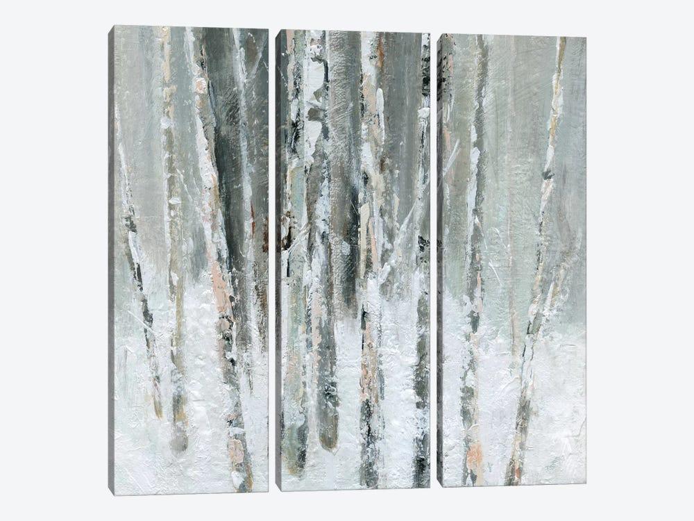 Birch Blush II by Carol Robinson 3-piece Canvas Wall Art