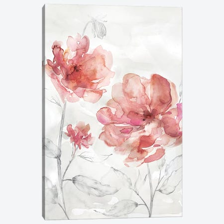 Blush Botanical I Canvas Print #CRO572} by Carol Robinson Art Print