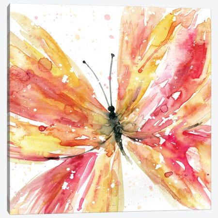 Butterfly Brook II Canvas Print #CRO578} by Carol Robinson Canvas Art Print