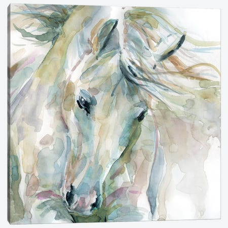 Exuberant Spirit Canvas Print #CRO588} by Carol Robinson Canvas Wall Art