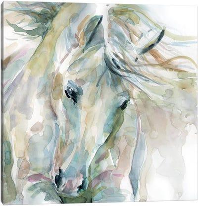 Exuberant Spirit Canvas Art Print