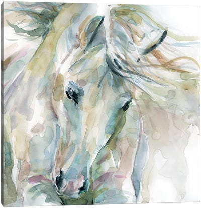 Exuberant Spirit Canvas Art Print