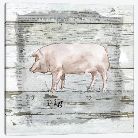 Farmhouse Collage Pig Canvas Print #CRO592} by Carol Robinson Art Print