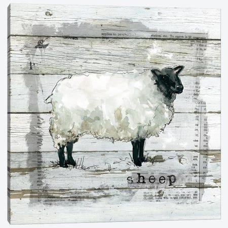 Farmhouse Collage Sheep Canvas Print #CRO594} by Carol Robinson Canvas Wall Art