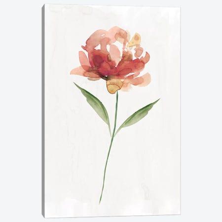 Happy Bloom II Canvas Print #CRO610} by Carol Robinson Canvas Art