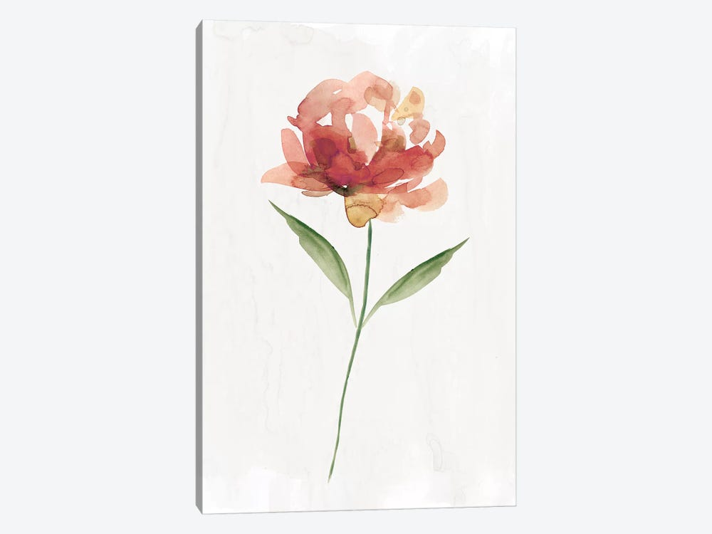 Happy Bloom II by Carol Robinson 1-piece Canvas Wall Art