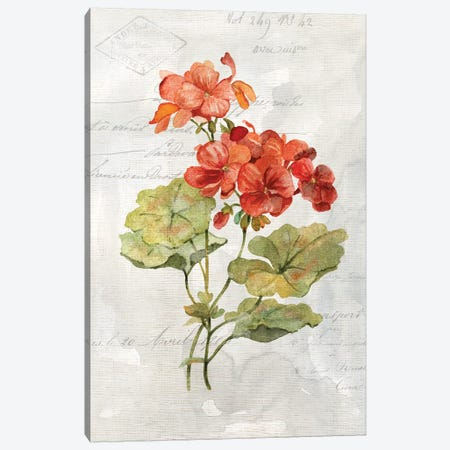 Linen Geranium Canvas Print #CRO616} by Carol Robinson Canvas Print