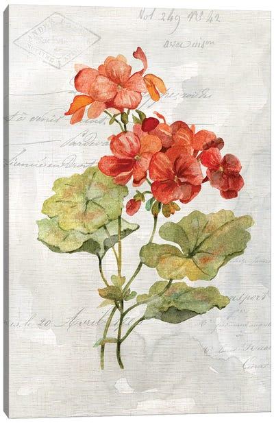 Linen Geranium Canvas Art Print