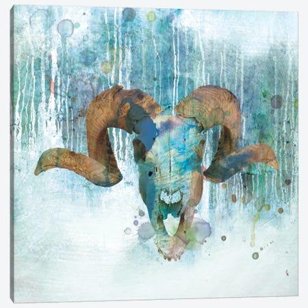 Beyond The Forest II Canvas Print #CRO62} by Carol Robinson Canvas Artwork