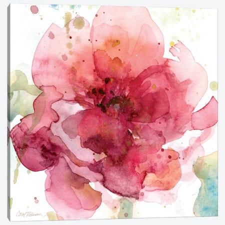 Bold Blush I Canvas Print #CRO63} by Carol Robinson Canvas Artwork