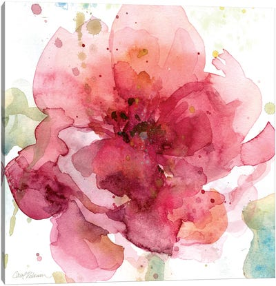 Bold Blush I Canvas Art Print
