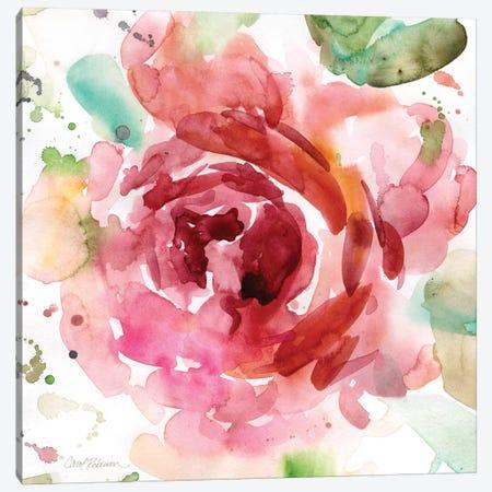Bold Blush III Canvas Print #CRO64} by Carol Robinson Canvas Art Print
