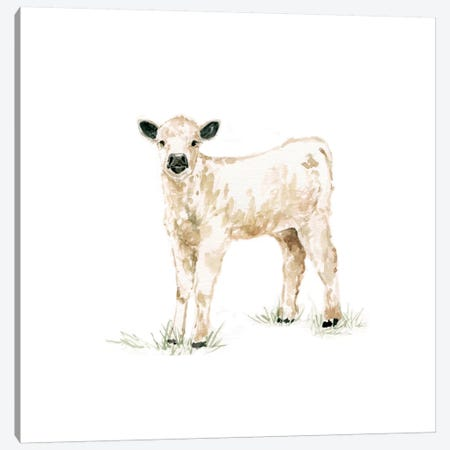 Calf Canvas Print #CRO65} by Carol Robinson Canvas Art Print