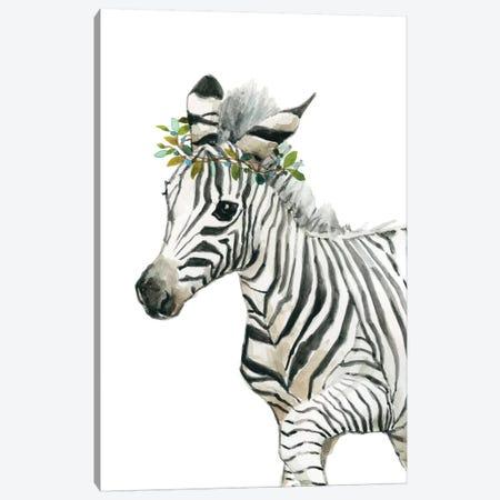 Savannah Zebra Canvas Print #CRO677} by Carol Robinson Canvas Art Print