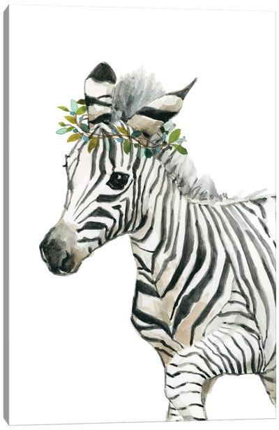 Savannah Zebra Canvas Art Print