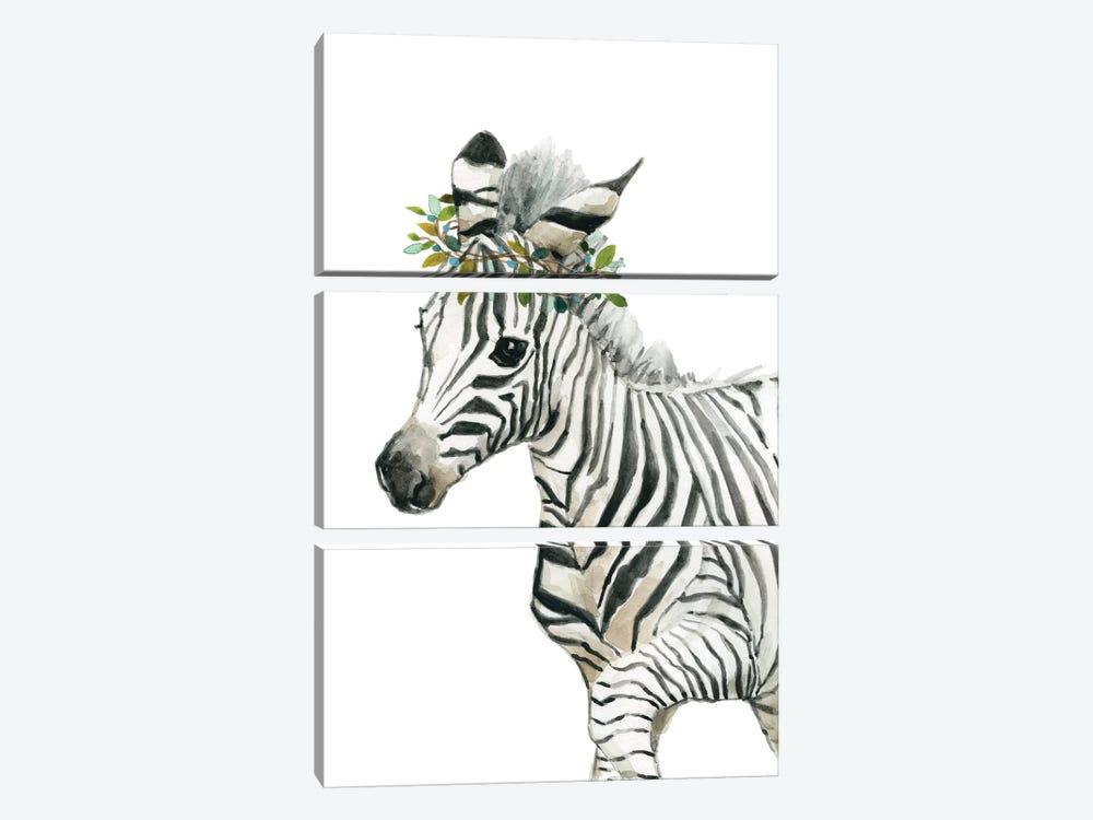 Savannah Zebra by Carol Robinson 3-piece Canvas Art Print