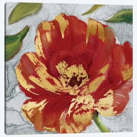 Crimson Crush II Canvas Print #CRO67} by Carol Robinson Art Print