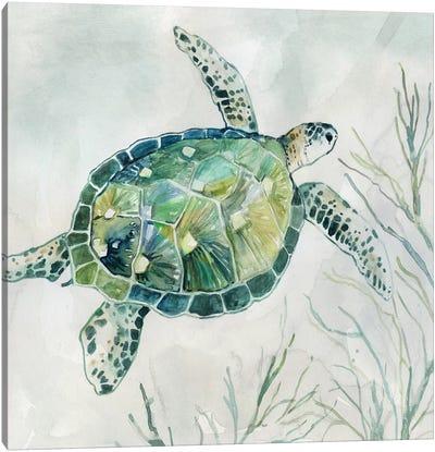 Seaglass Turtle I Canvas Art Print