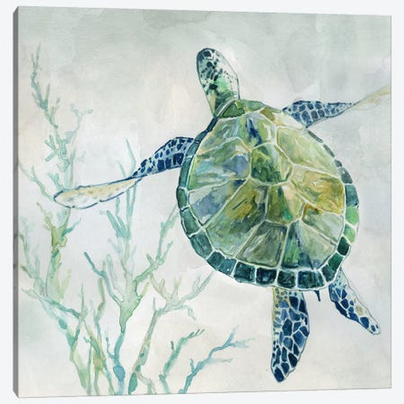 Seaglass Turtle II Canvas Print #CRO685} by Carol Robinson Canvas Wall Art