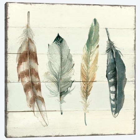 Shiplap Feathers I Canvas Print #CRO690} by Carol Robinson Canvas Wall Art