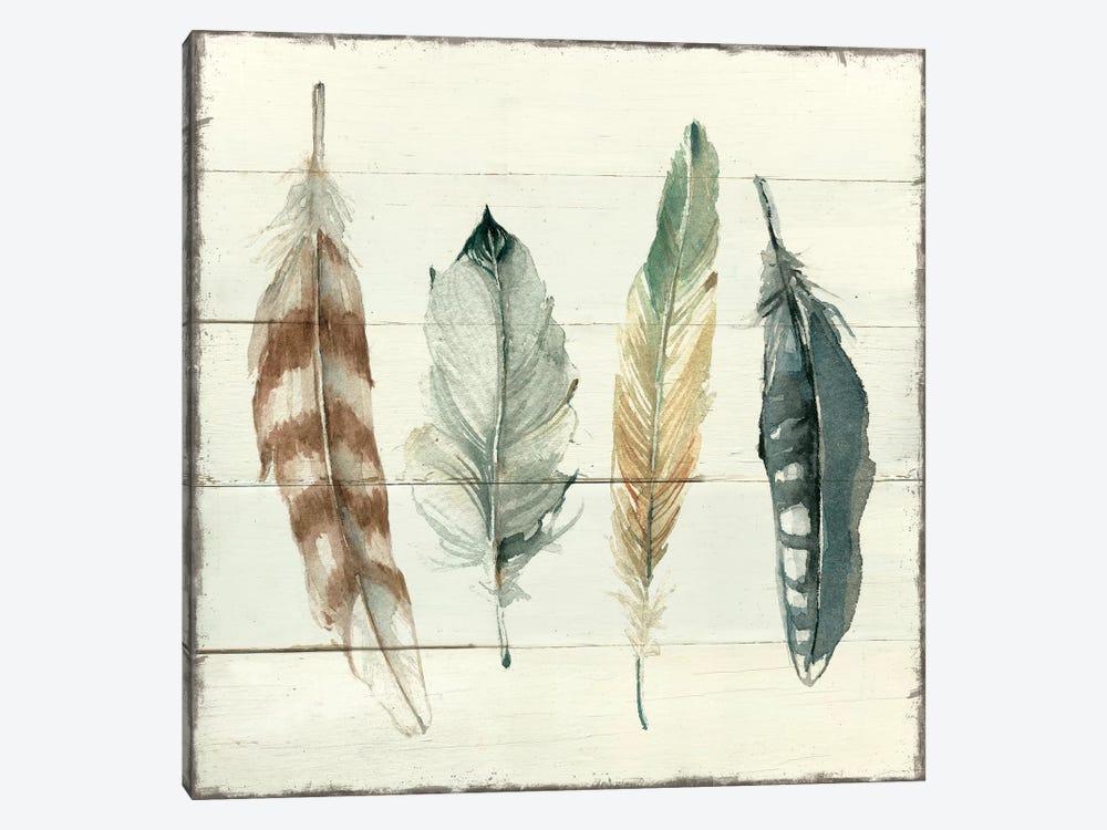 Shiplap Feathers I by Carol Robinson 1-piece Canvas Wall Art