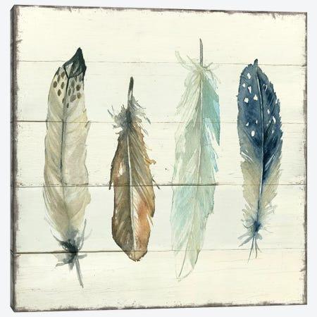 Shiplap Feathers II Canvas Print #CRO691} by Carol Robinson Canvas Art
