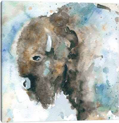 Buffalo On Blue Canvas Art Print