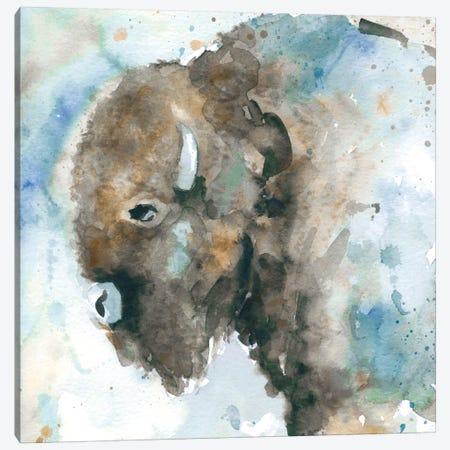 Buffalo On Blue Canvas Print #CRO6} by Carol Robinson Canvas Art Print