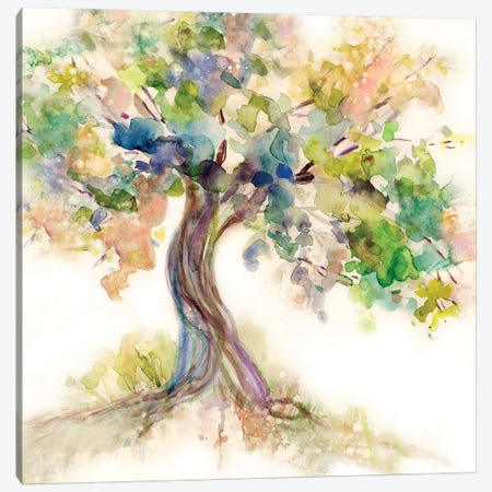 Tree of Life Canvas Print #CRO708} by Carol Robinson Canvas Wall Art