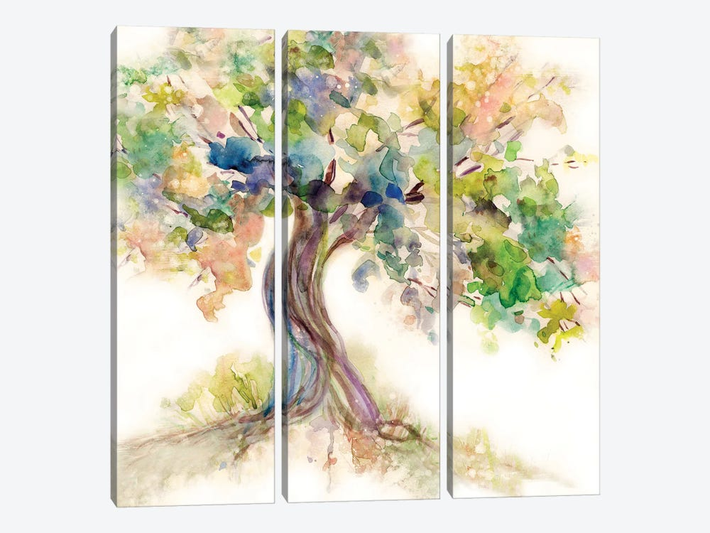 Tree of Life by Carol Robinson 3-piece Canvas Wall Art
