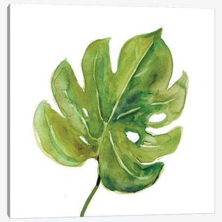 Tropical Frond I Canvas Print #CRO709} by Carol Robinson Canvas Wall Art