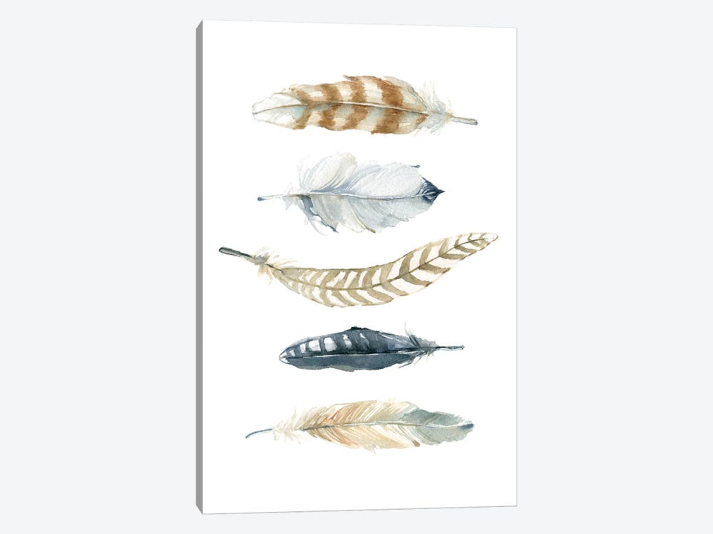 Feather Collection II by Carol Robinson 1-piece Canvas Wall Art