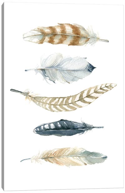 Feather Collection II Canvas Art Print