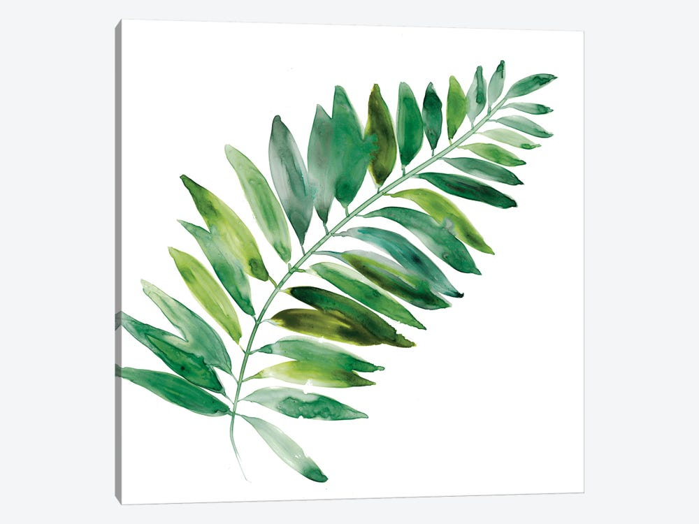 Tropical Frond II 1-piece Canvas Art Print