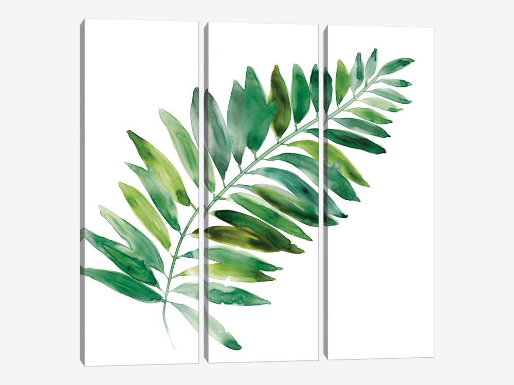 Tropical Frond II 3-piece Canvas Print