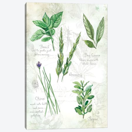 Fresh Herbs I Canvas Print #CRO71} by Carol Robinson Art Print